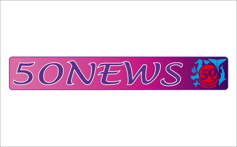 広報紙「50NEWS」